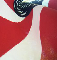 Flag1_1