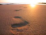 Footsteps2_1